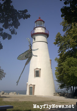 Giant Mayfly on marblehead ohio lighthouse